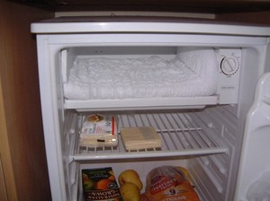 Frozen food in fridge